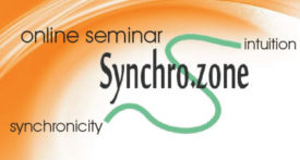 Enter the Synchro.zone