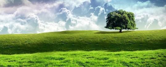 Rascjep cjeline na materijalno i duhovno